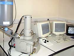 Leo 435VP Scanning Electon Microscope with Oxford Isis 300 EDS