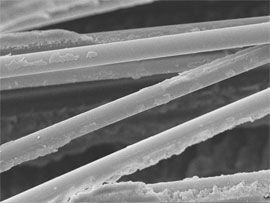 SEM image of glass fibres